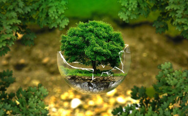 Comunicazione ambientale, un libro bianco ne indaga strumenti e professionalità